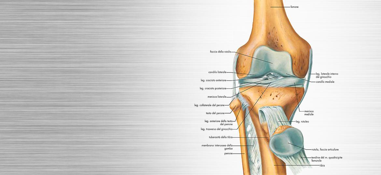 Acqua nel ginocchio - Versamento al ginocchio